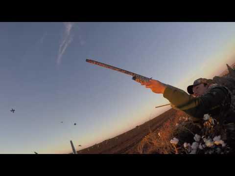 Final Descent Guide Services - Sandhill Crane Hunting - Lubbock, TX