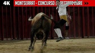 Imagen del video: TOROS: Concurso de recorte libre en Montserrat