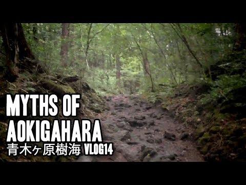 Aokigahara Jukai | 青木ヶ原樹海 | Vlog14
