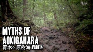 Baixar Aokigahara Jukai | 青木ヶ原樹海 | Vlog14