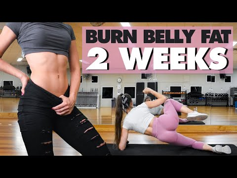 ABS IN 2 WEEKS | Lose Belly Fat Fast | No Equipment Workout
