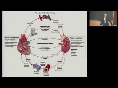 Cardiorenal syndrome in advanced heart failure
