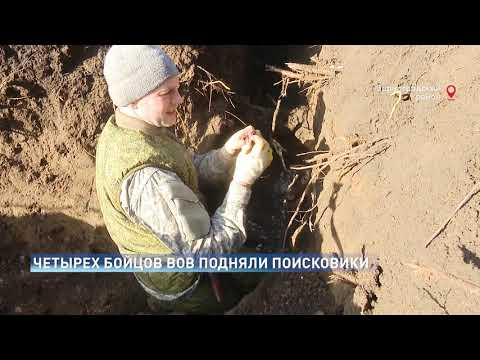 Останки четырех бойцов Великой Отечественной нашли в Зернограде