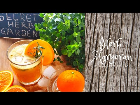 Herb Maryoran - Sheer Joy of your own secret  aromatic herb garden!