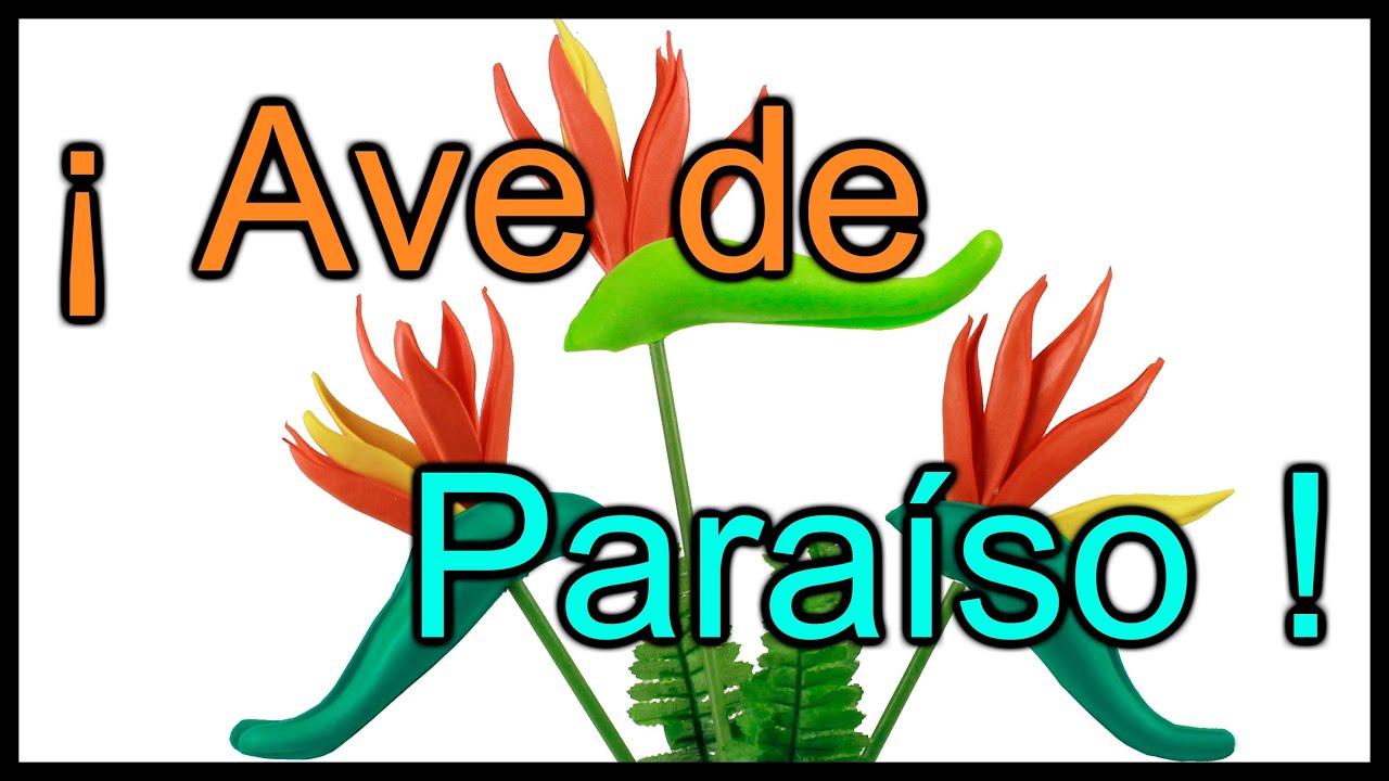 Tutorial Ave de Paraíso en 3 minutos ! Muy Fácil - YouTube