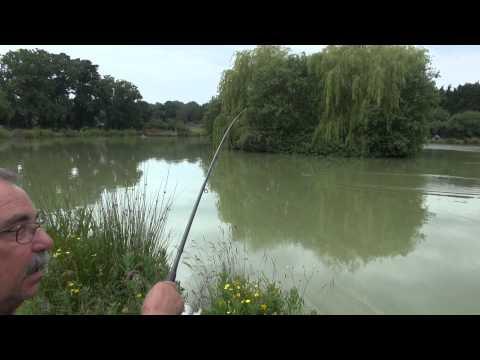 SHIRKOAK FISHERIES, WOODCHURCH, KENT ANGLERS MAIL TACTICAL BRIEFINGS