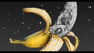 Bananas On The Real Side (File 26)