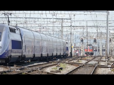 Live Train - Trains