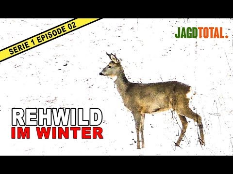 Jagd Auf Rehwild | JAGD TOTAL - S1 Ep 02