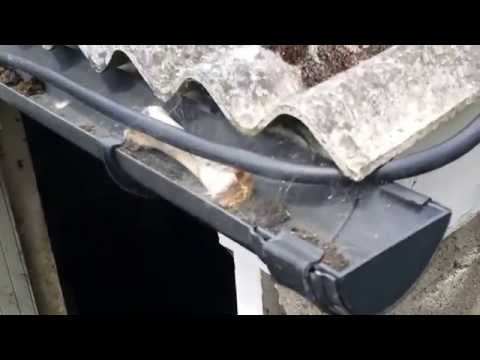 dangers-of-an-asbestos-corrugated-roof