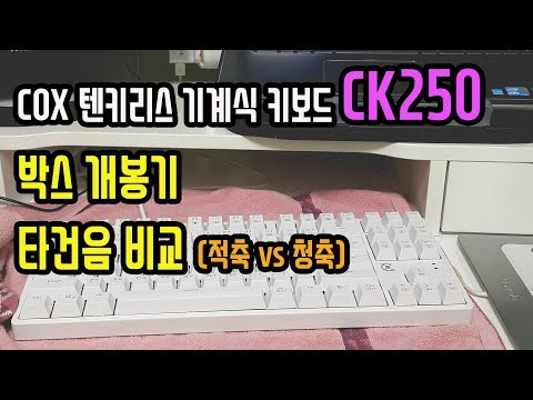 COX CK250 박스 개봉기 & 타건음 비교 (적축 vs 청축) | 콕스 텐키리스 LED 화이트 기계식 키보드