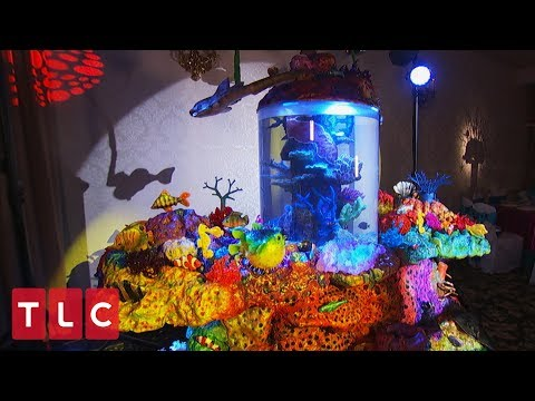 A Sweet 16 Aquarium Cake! | Cake Boss