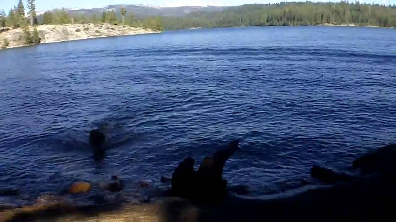 Wolf creek campground union valley reservoir beach youtube for Union valley reservoir fishing