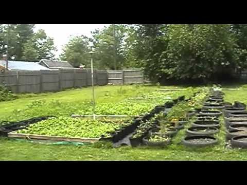 Black Homeschoolers-Eden Organic Garden - Our Family Farm