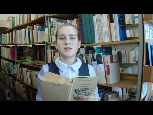 Изображение предпросмотра прочтения – ВероникаУтробина читает произведение «Песнь о собаке» С.А.Есенина