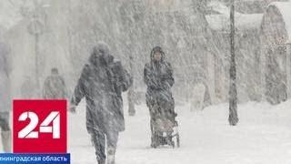Берег Балтики покрылся ледяными медузами - Россия 24