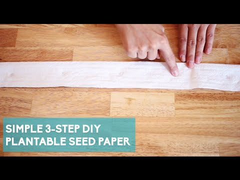 Make Your Own Plantable Seed Paper
