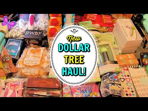 Huge DOLLAR TREE HAUL!  Fun New Finds! July 1, 2020 | #LeighsHome