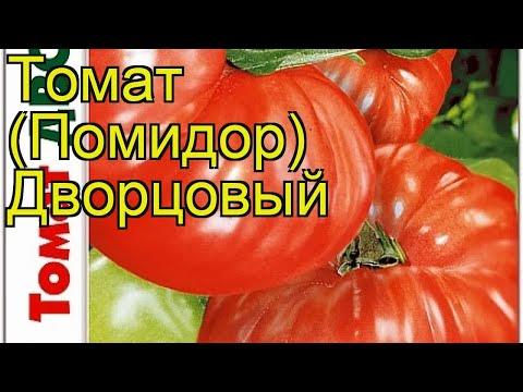 Томат Дворцовый. Краткий обзор, описание характеристик solanum lycopersicum Dvortcovyj