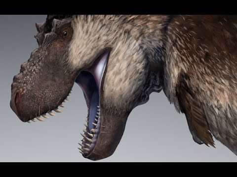 Did T.rex have feathers?