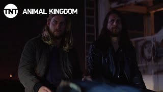 Animal Kingdom: We're Never Doing This Again - Season 2, Ep. 11 [CLIP] | TNT thumbnail