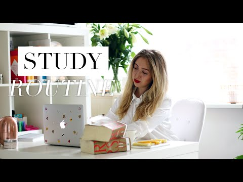 My Study Routine During the Semester for Law School/University