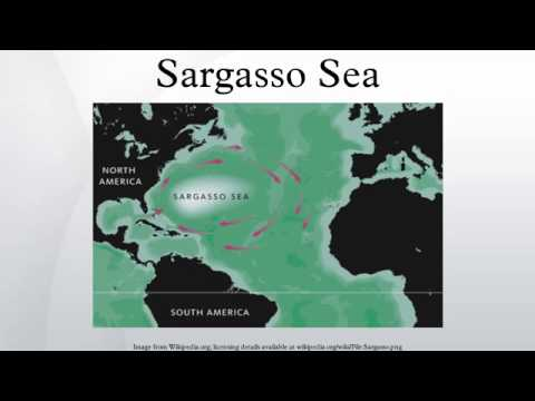 Sargasso Sea On World Map.Sargasso Sea Youtube