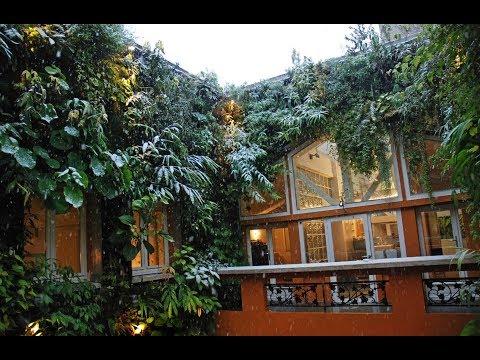 Tips for Growing Vegetables in a Vertical Garden | Home Vertical Garden