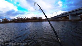 ТАМ ТРОФЕЙ ОСЕННИЙ ЖОР ЩУКИ Рыбалка на спиннинг в ноябре Ловля щуки осенью Часть 2