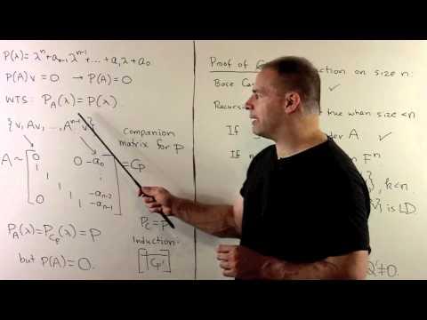 Cayley-Hamilton Theorem: General Case