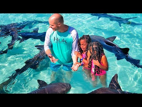 6-year Old Twins Overcome Biggest Fear | SWIMMING WITH SHARKS!