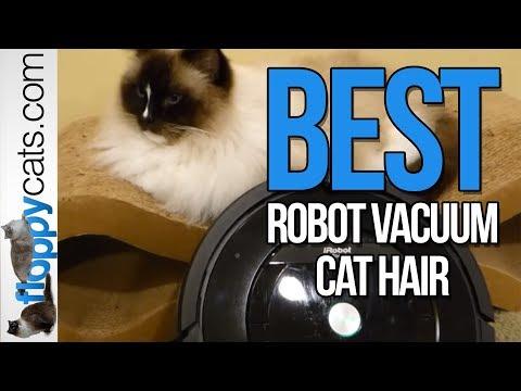 Best Robot Vacuum Cat Hair - iRobot Roomba 880 Review - Roomba for Pets Costco - Floppycats