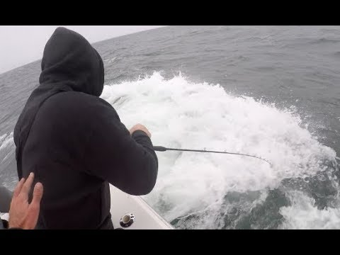 Super ROUGH Day + Broken Rod + Target Tautog