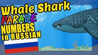 Whale Shark Teaching to Count 1 to 20 in Russian Language and Numbers Video for Kids