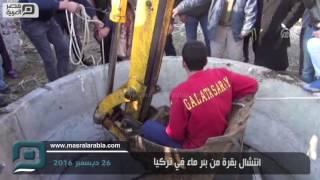 مصر العربية   انتشال بقرة من بئر ماء في تركيا