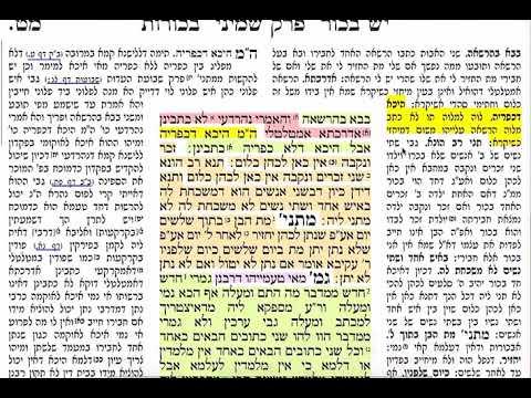 הדף היומי מסכת בכורות דף מט 49 Daf yomi Bechoros daf 49
