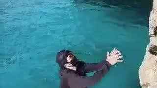 Gambar cover Köpekbalığı saldırısı