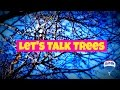Timely Tips for Spring - Let's Talk Trees with Diane Wilson