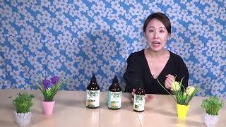 우리나라장터 쓰루펀드 천연화장품 그린헤나샴푸 그린헤나디…