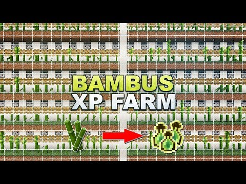 mehrzahl bambus
