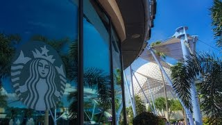 Complete tour of all Disney Parks Starbucks Locations at Walt Disney World and Disneyland Resort
