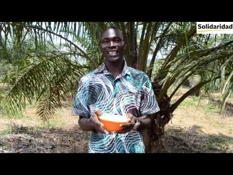 Solidaridad Sustainable West Africa Palm Oil Best Practices