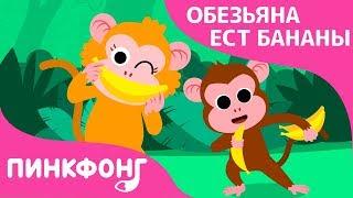 Обезьяна ест Бананы | Песни про Животных | Пинкфонг Песни для Детей