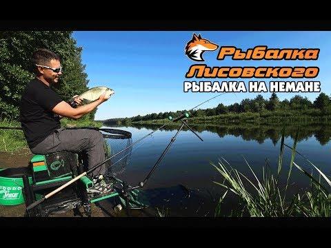 Утренняя фидерная рыбалка на Немане