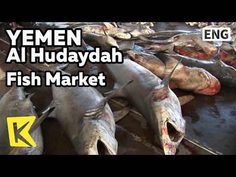 【K】Yemen Travel-Al Hudaydah[예멘 여행-호데이다]어시장과 상어 경매/Fish Market/Shark/Auction