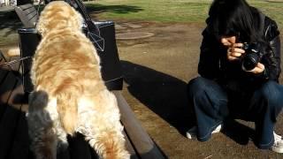 公園でたくさん遊んだから、のどかわいちゃった~