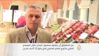 مهرجان للتعريف بفوائد الرمان بمدينة تستور التونسية