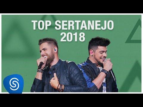 Top s Sertanejo 2019 - Os Melhores s