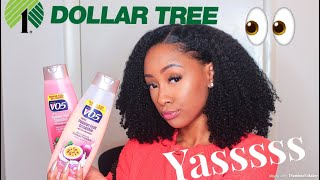 BOMB Wash And Go Using Products ONLY From the DOLLAR TREE !!
