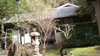 鎌倉~覚園寺~